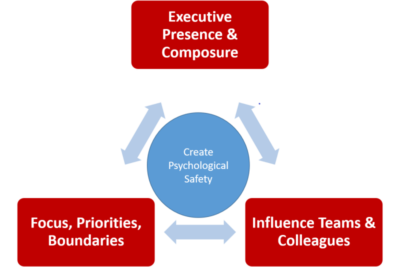 Firebrand Consulting LLC Coaching Framework