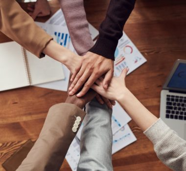 individual, team, team identity, team purpose